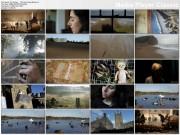 PJ HARVEY - The Last Living Rose (2011) - 1 music video (logo free 720)