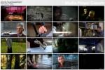 Nasz przodek neandertalczyk / The Neanderthal in Us (2010) PL.TVRip.XviD / Lektor P