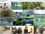 Dzikie zak�tki Europy / Hidden Europe (2002) PL.TVRip.XviD / Lektor PL