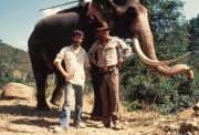 Индиана Джонс и храм судьбы / Indiana Jones and the Temple of Doom (Харрисон Форд, Кейт Кэпшоу, 1984) E9fe82204599380