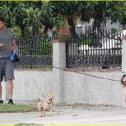 Kellan Lutz: Jogging with Kola and Kevin! 45767b90505991